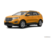 2016 Ford Edge SEL | Photo 3 | Electric Spice