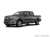 2016 Ford F-150 XLT | Photo 3 | Magnetic