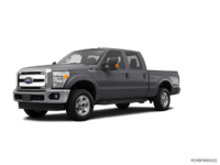 2016 Ford Super Duty F-250 XLT | Photo 3 | Magnetic
