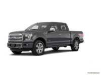 2017 Ford F-150 PLATINUM | Photo 3 | Magnetic