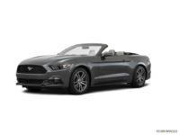 2017 Ford Mustang Convertible EcoBoost Premium | Photo 3 | Magnetic
