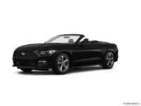 2017 Ford Mustang Convertible V6 | Photo 3 | Shadow Black
