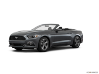 2017 Ford Mustang Convertible V6 | Photo 3 | Magnetic