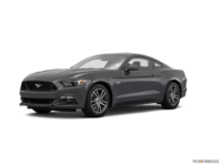 2017 Ford Mustang GT | Photo 3 | Magnetic