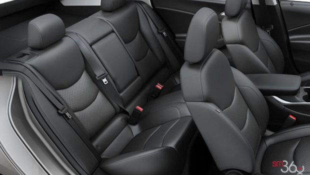 Jet Black Leather (HOY-A51)