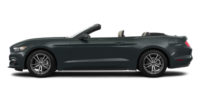 2016 Ford Mustang Convertible EcoBoost Premium | Photo 4 | Guard