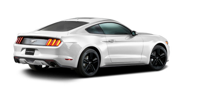 2016 Ford Mustang EcoBoost Premium | Photo 5 | Oxford White