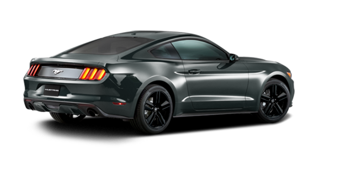 2016 Ford Mustang EcoBoost Premium | Photo 5 | Guard