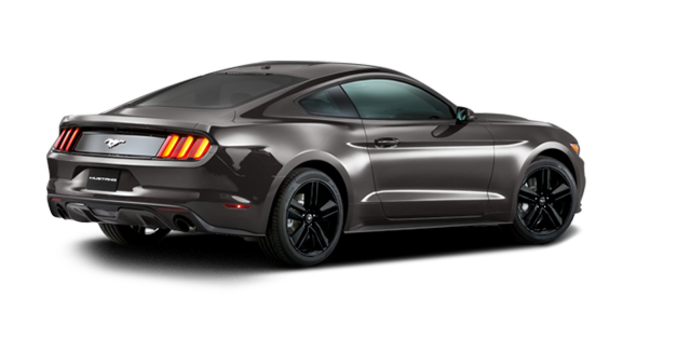 2016 Ford Mustang EcoBoost Premium | Photo 5 | Magnetic