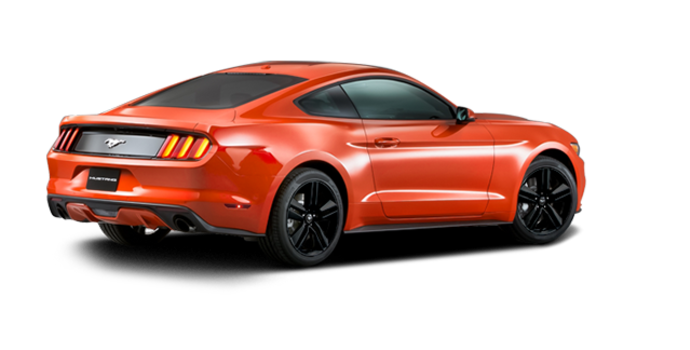 2016 Ford Mustang EcoBoost Premium | Photo 5 | Competition Orange