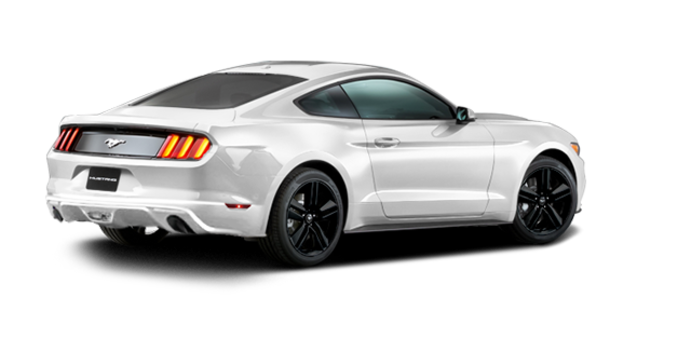 2016 Ford Mustang EcoBoost | Photo 5 | Oxford White