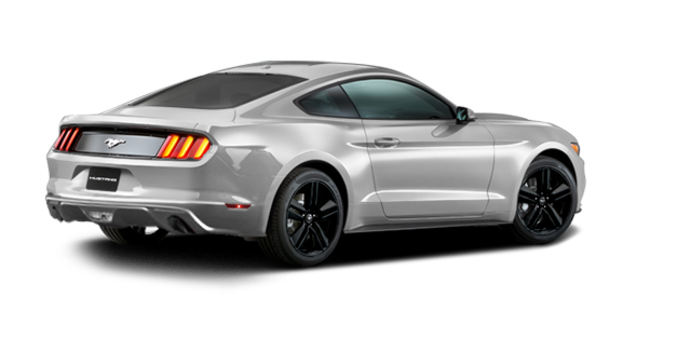 2016 Ford Mustang EcoBoost | Photo 5 | Ingot Silver