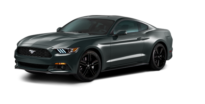 2016 Ford Mustang EcoBoost | Photo 6 | Guard