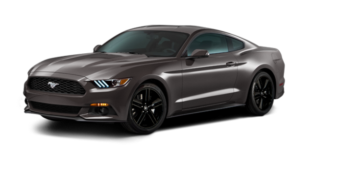 2016 Ford Mustang EcoBoost | Photo 6 | Magnetic