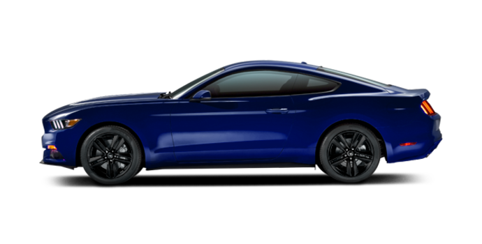 2016 Ford Mustang EcoBoost | Photo 4 | Deep Impact Blue