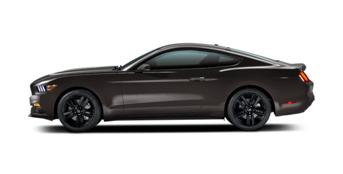 2016 Ford Mustang EcoBoost | Photo 4 | Magnetic