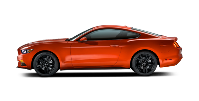 2016 Ford Mustang EcoBoost | Photo 4 | Competition Orange