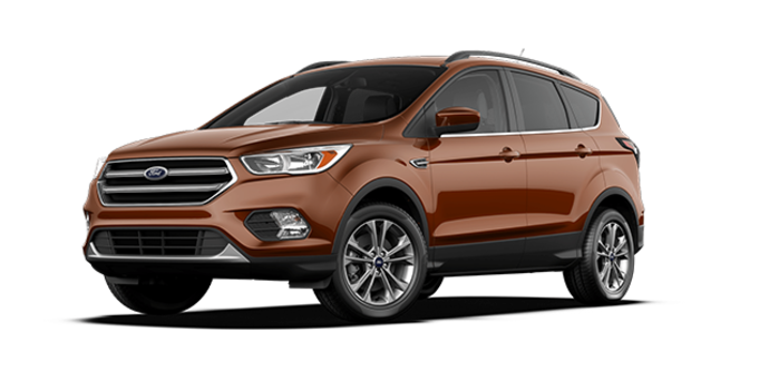 2017 Ford Escape SE | Photo 6 | Canyon Ridge
