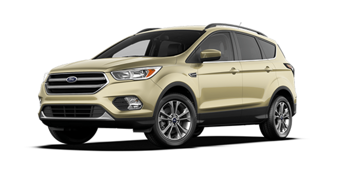 2017 Ford Escape SE | Photo 6 | White Gold