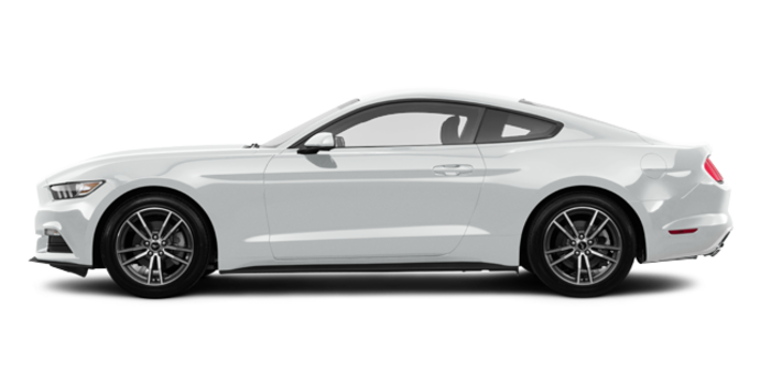 2017 Ford Mustang EcoBoost | Photo 4 | Oxford White