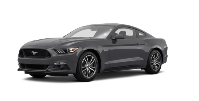 2017 Ford Mustang GT | Photo 6 | Magnetic