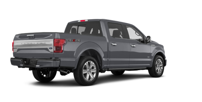 2018 Ford F-150 PLATINUM | Photo 5 | Magnetic