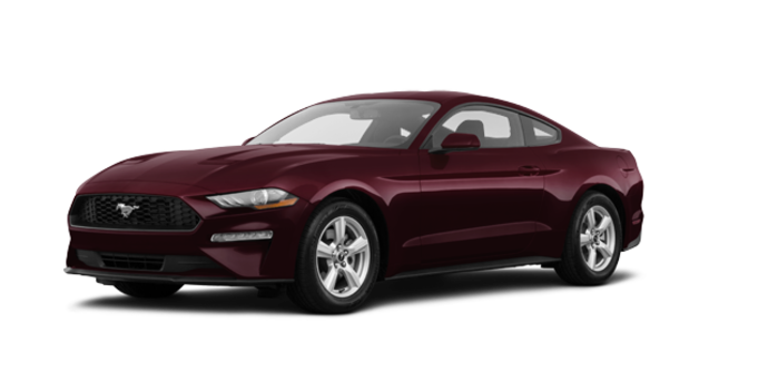2018 Ford Mustang EcoBoost Fastback | Photo 6 | Royal Crimson Metallic Tinted Clearcoat