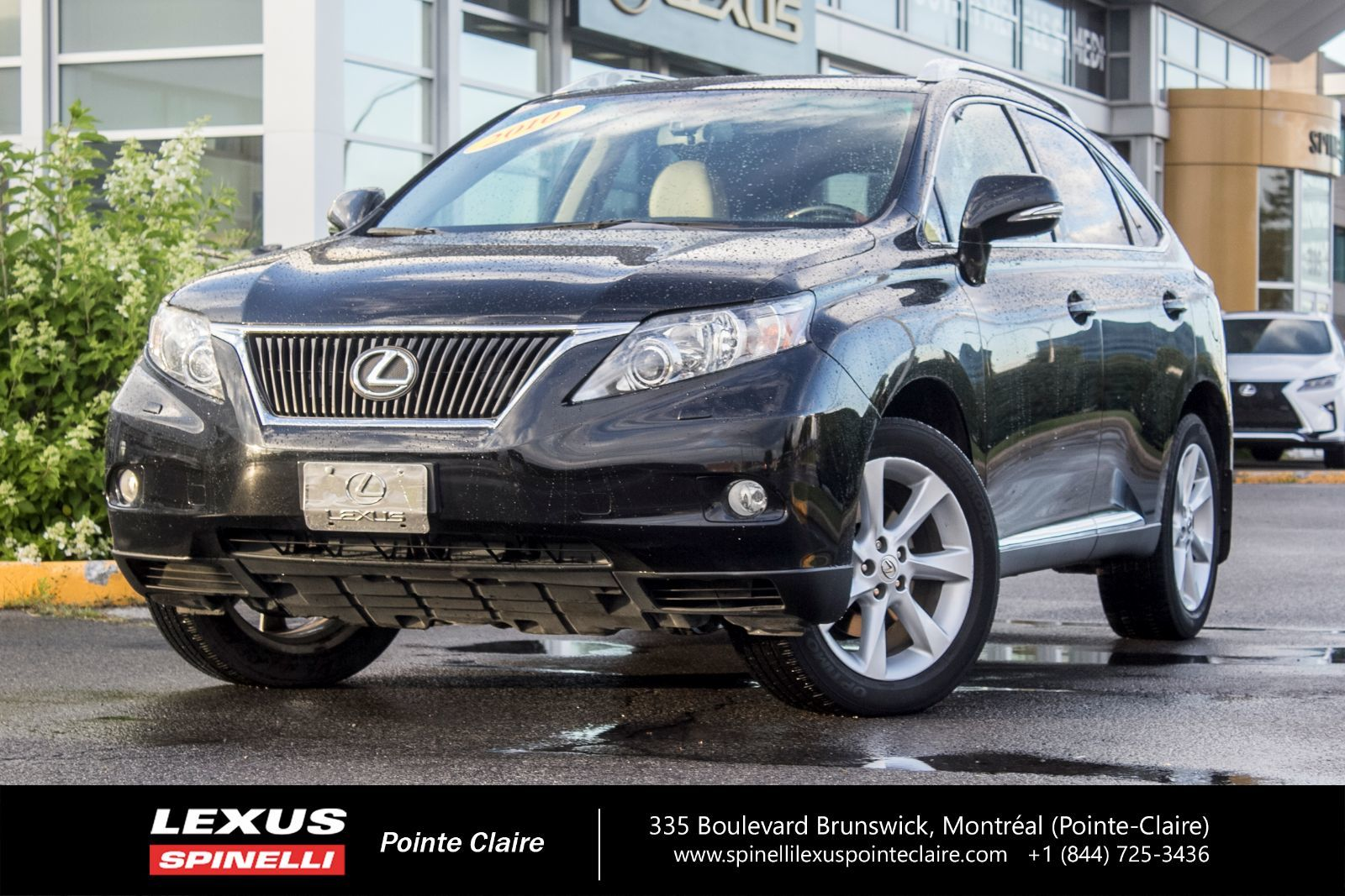 used 2010 lexus rx 350 touring nav cam toit cuir in montreal laval and south shore p1859a. Black Bedroom Furniture Sets. Home Design Ideas