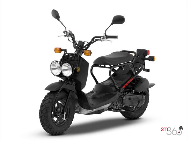 New 2019 Honda RUCKUS STANDARD   Edmundston Honda