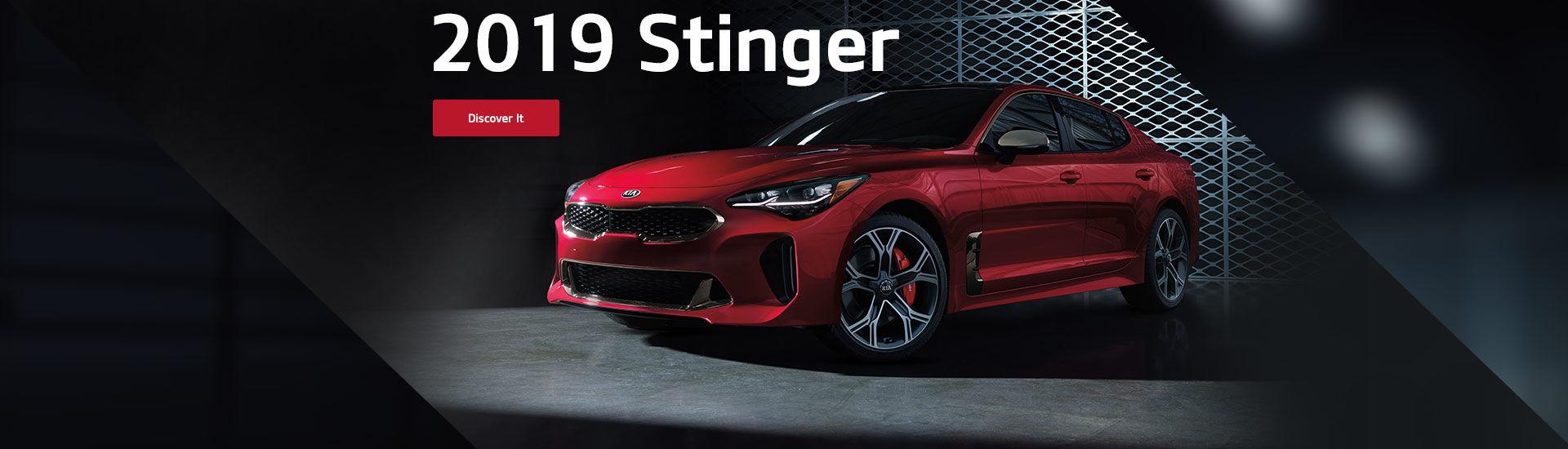 2019 Stinger