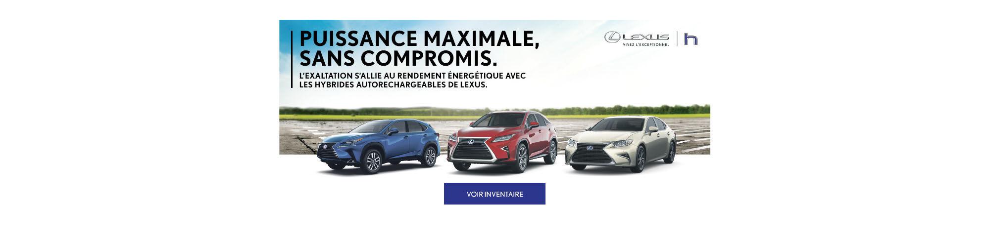 Lexus hybrides