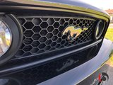 Ford Mustang 2014 GT - SPORT PACK - CUIR/BREMBO - MAGNAFLOW - WOW!