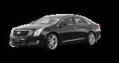 Cadillac XTS AWD 1SC 2016
