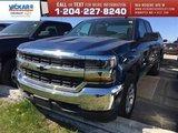 2017 Chevrolet Silverado 1500 LS  - MyLink -  Bluetooth - $247.92 B/W