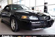 Ford Mustang convertible  2004 Parfaite pour l'été!