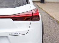 2019 Lexus UX 250h SPORT SERIES-1 AWD