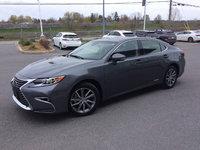 My new Lexus