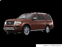 2017 Ford Expedition PLATINUM | Photo 3 | Bronze Fire Metallic