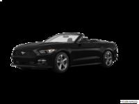 2017 Ford Mustang Convertible V6 | Photo 3 | Shadow Black