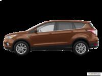 2018 Ford Escape SE | Photo 1 | Cinnamon Glaze