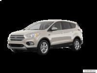 2018 Ford Escape SE | Photo 3 | White Gold