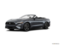 2018 Ford Mustang Convertible EcoBoost | Photo 3 | Magnetic Metallic