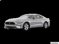 2018 Ford Mustang EcoBoost Fastback | Photo 3 | Ingot Silver Metallic