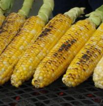 20th Annual Leaside Rotary Club Annual Corn Roast