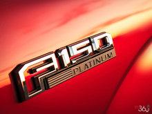 2016 Ford F-150 PLATINUM | Photo 8