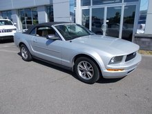 Ford Mustang Cabriolet 2005