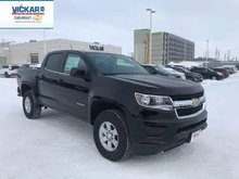 2019 Chevrolet Colorado WT  - $234.24 B/W