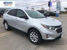 2019 Chevrolet Equinox LS  - $177.55 B/W