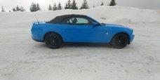 Ford Mustang V6 Premium 2012 BIJOUX
