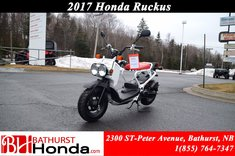 Honda Ruckus NPS50 2017